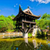 Drifters Guide Asian Trip Experience Tour
