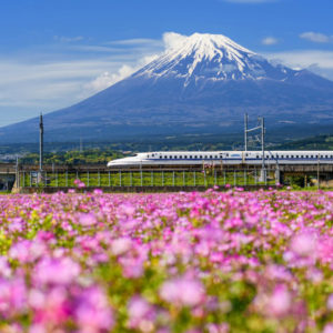 Drifters Guide Japan Experience Tour