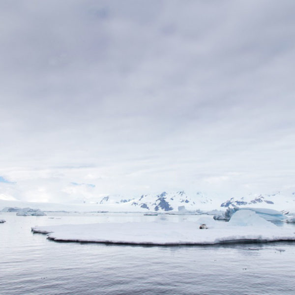 Drifters Guide South Pole Expedition tour
